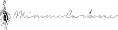 Il Calzolaio Mimmo Carbone Logo